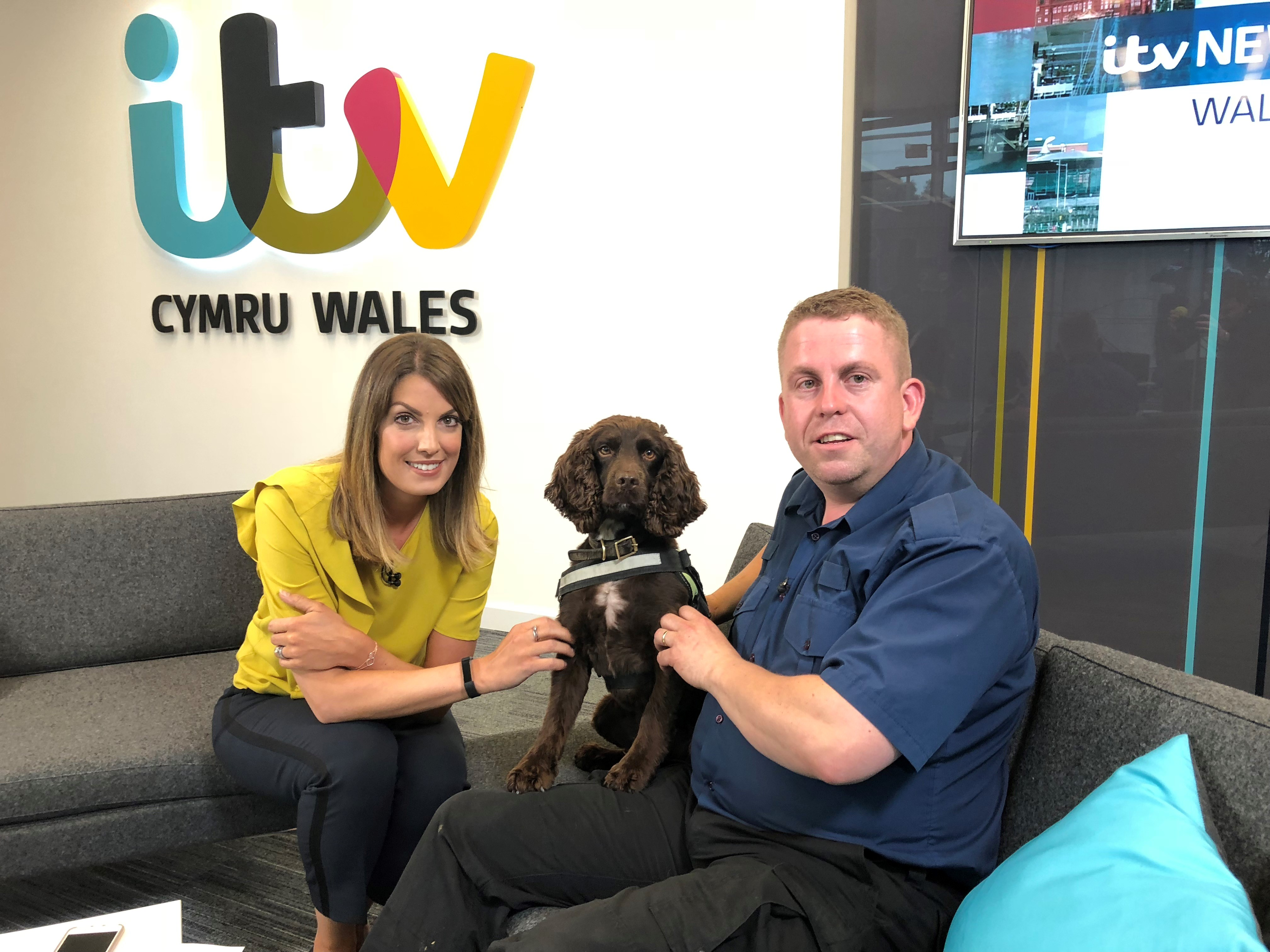 Stuart Phillips and sniffer dog YOYO with ITV Wales News Presenter Andrea Byrne